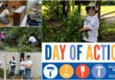 United Way of Broome County Volunteer Day – The Day of Action